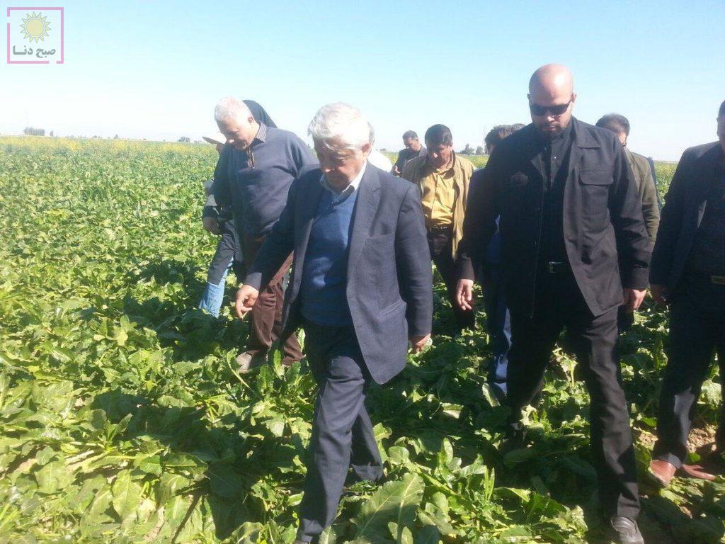 پا گذاشتن وزیر بر روی محصولات کشاورزی