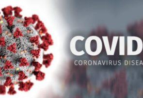 چرایی حمله کروناویروس به دستگاه تنفسی/میزان پایداری کووید ۱۹ بر روی سطوح/آیا کووید-۱۹ با گرم شدن هوا از بین میرود؟