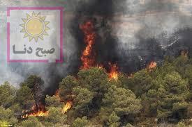 دستور استاندار؛ لزوم همکاری برای مهار آتش سوزی مراتع گچساران