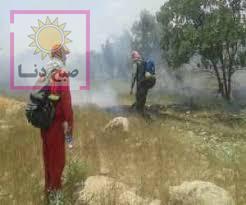 آخرین خبرها از وضعیت آتش سوزی در گچساران و منطقه گناوه لری از زبان مدیرکل بحران