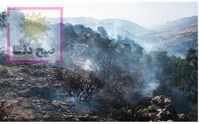 آتش سوزی مراتع گچساران پس از ۸۰ ساعت مهار شد