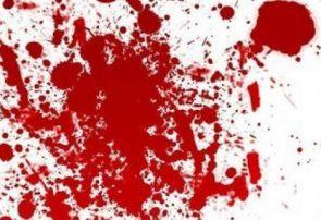 قتل بیرحمانه پدر و مادر در ممسنی/قاتل در چنگ قانون