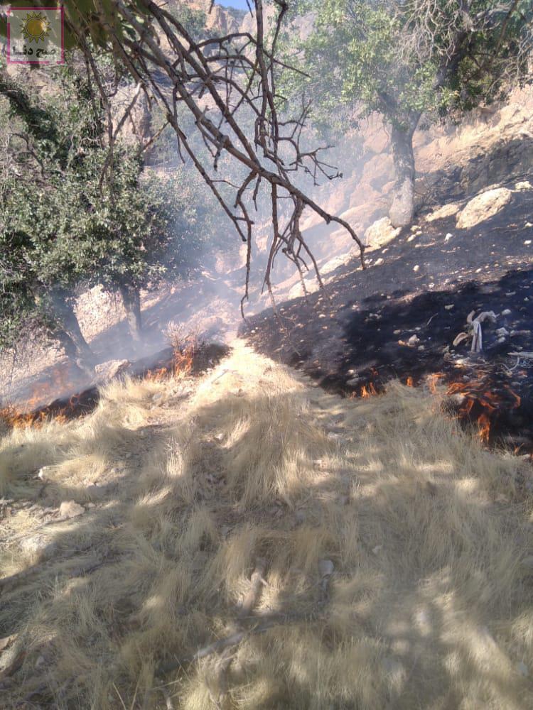 آتش سوزی منطقه حفاظت شده دنا در حال مهار/فرماندار پناهی:پایش منطقه ادامه دارد/تجهیز دهستان های مهم به دستگاه دمنده